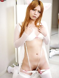 The lovely Kana Hoshino is the purrrrr-fect kind of newhalf! She likes heavy petting and being tongued by the right guy!