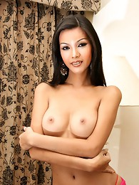 Hot ladyboy with a great ass and shedick!