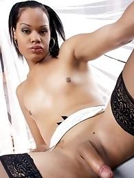 Horny shemale posing her hot chocolate body